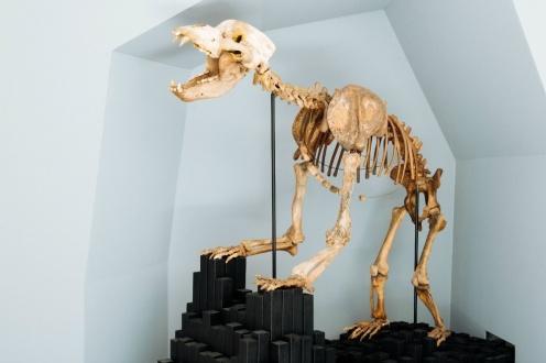 karst-museum4