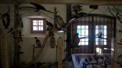 predjama_museum7