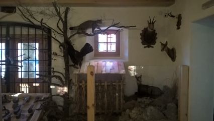 predjama_museum9